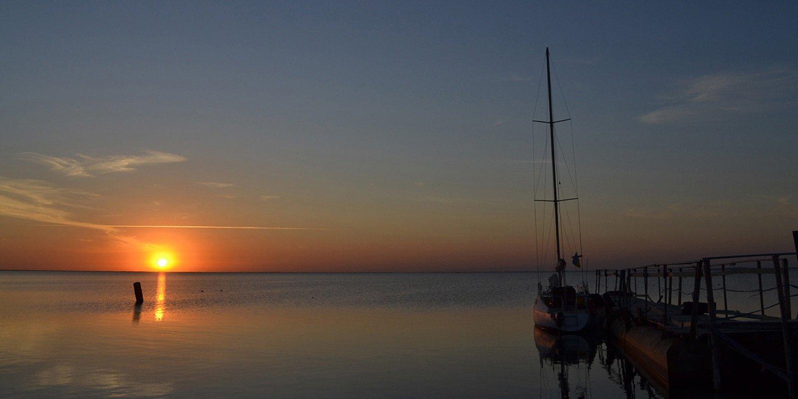 Джарилгач - унікальна заповідна територія в Чорному морі, фауна і флора якого настільки цінна, що більшість видів занесені до Червоної книги.