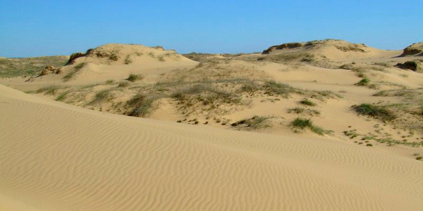 У літню спеку на сонці пісок нагрівається до 75 градусів - при такій температурі цілком можна підсмажити яєчню