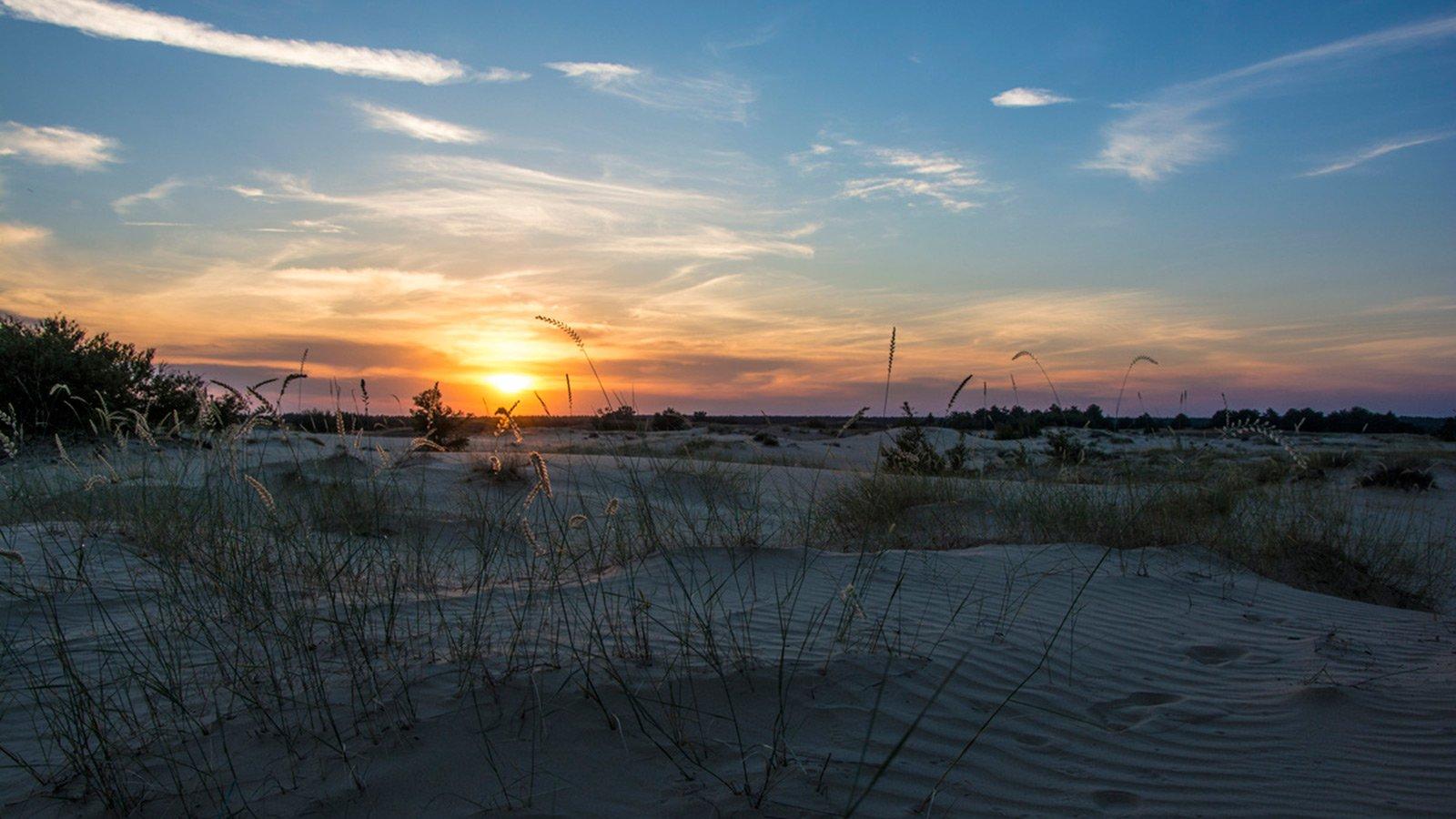 В літні дні пісок прогрівається до такого стану, що це впливає на рух повітряних мас: розпечене повітря, піднімаючись, відштовхує дощові хмари, тому опадів тут значно менше, ніж у Херсоні, з іншого боку Дніпра.